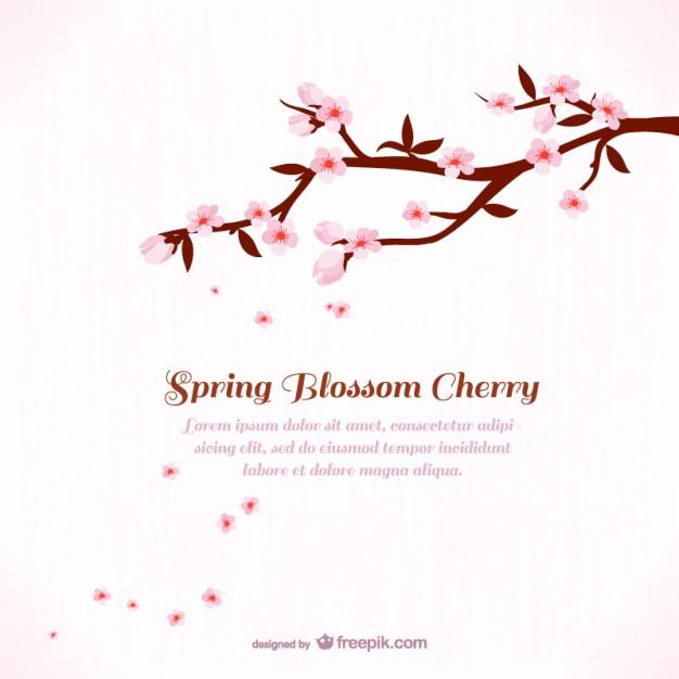 Sakura Blossom clipart #1, Download drawings