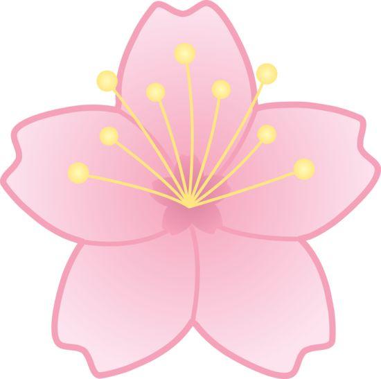 Sakura Blossom clipart #7, Download drawings