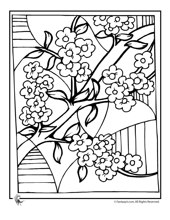 Sakura Blossom coloring #2, Download drawings