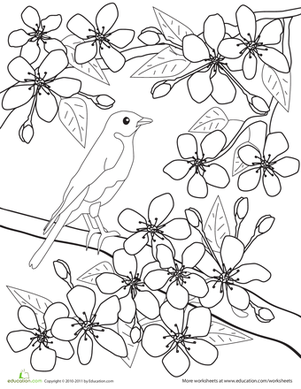 Ume Blossom coloring #17, Download drawings