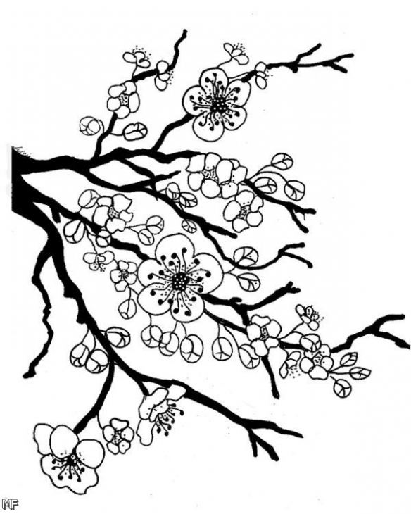 Sakura Tree coloring #14, Download drawings