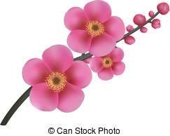 Sakura clipart #18, Download drawings