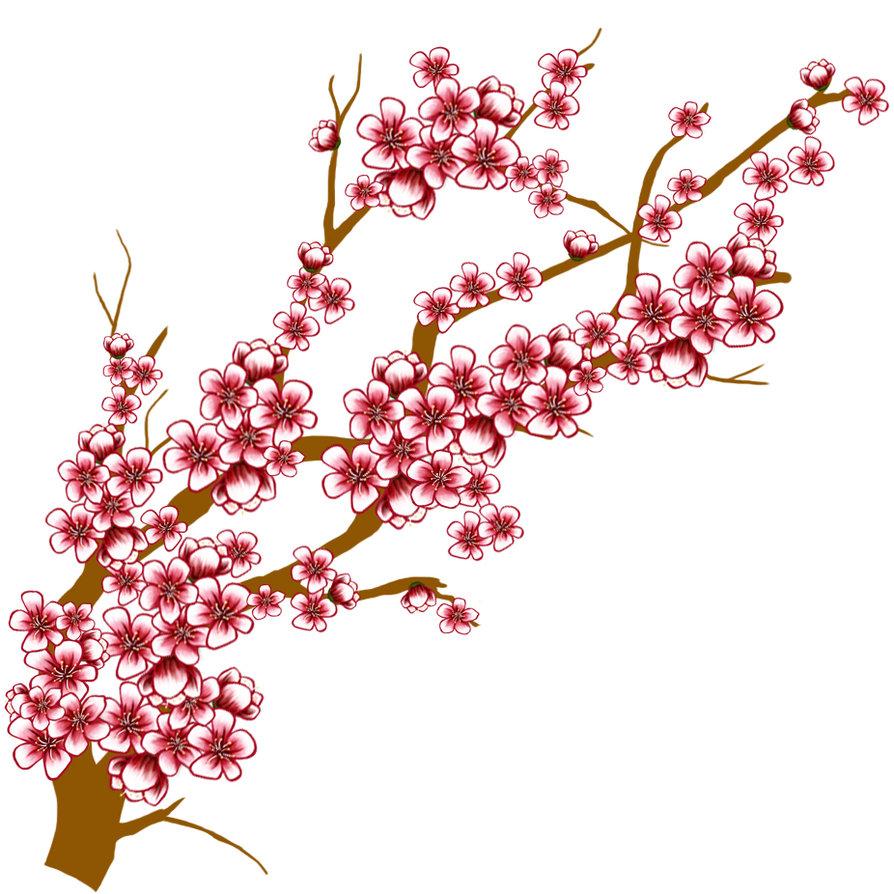 Sakura clipart #10, Download drawings