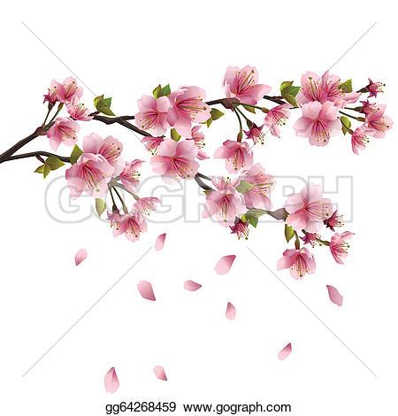 Sakura clipart #13, Download drawings