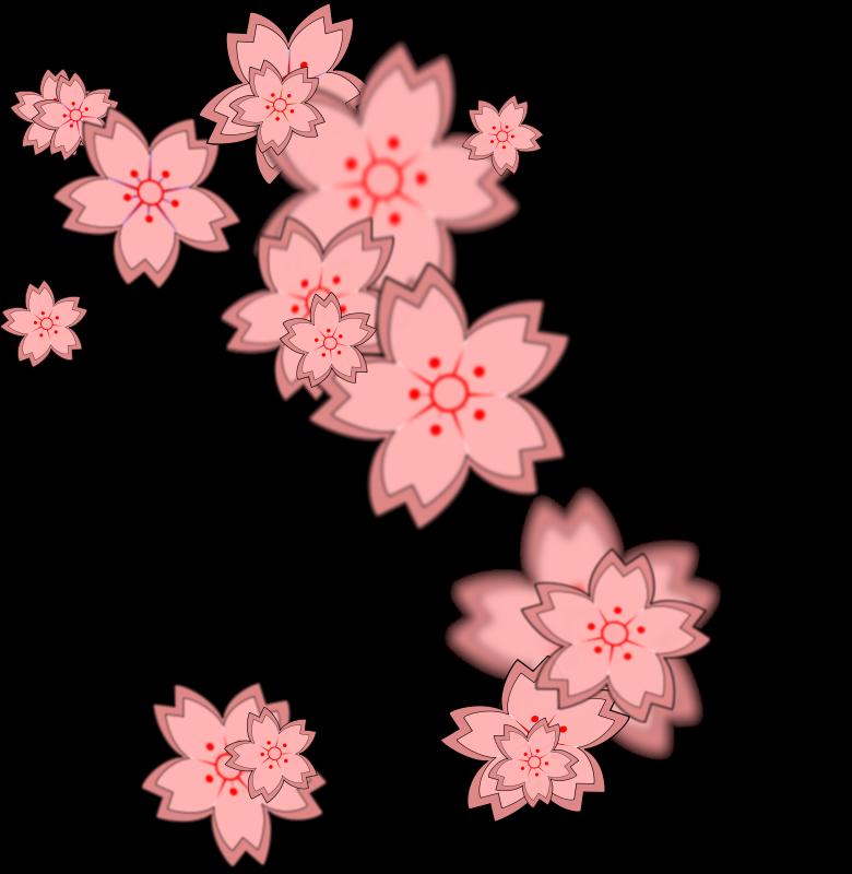 Sakura clipart #8, Download drawings