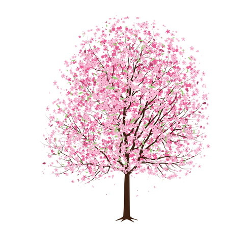 Sakura Tree coloring #12, Download drawings
