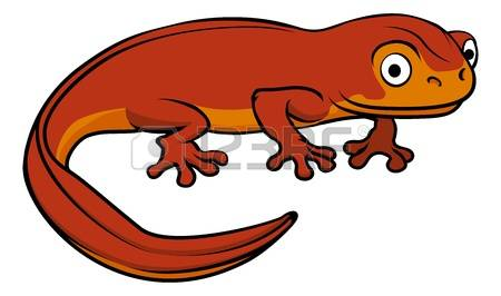 Salamander clipart #13, Download drawings