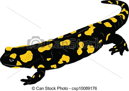 Salamander clipart #3, Download drawings