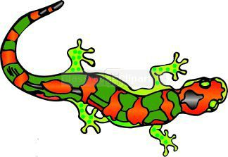 Salamander clipart #16, Download drawings