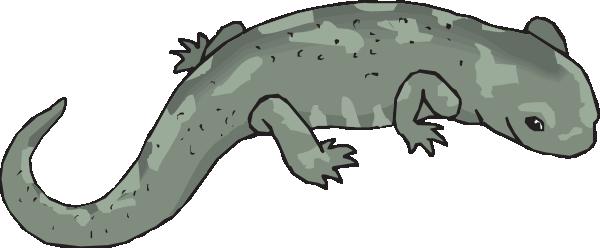 Salamander svg #19, Download drawings