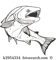 Salmon clipart #15, Download drawings