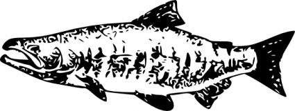 Salmon clipart #5, Download drawings