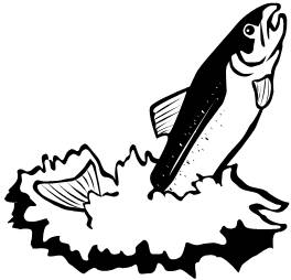 Salmon clipart #4, Download drawings