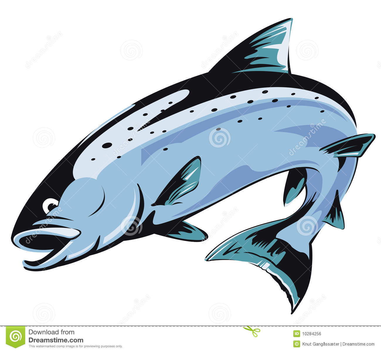 Salmon clipart #16, Download drawings
