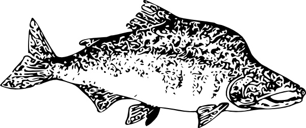 Salmon svg #7, Download drawings