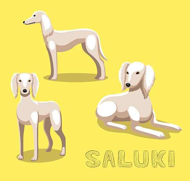 Saluki clipart #14, Download drawings