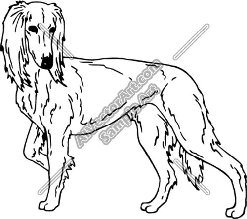 Saluki clipart #9, Download drawings