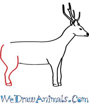 Sambar  coloring #15, Download drawings