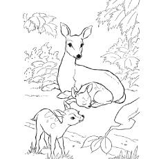 Sambar  coloring #14, Download drawings