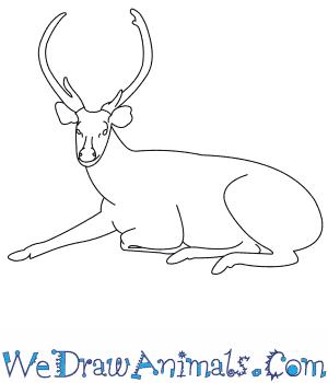Sambar  coloring #17, Download drawings