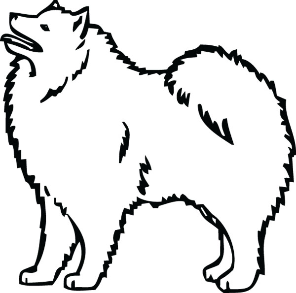Samoyed clipart #11, Download drawings