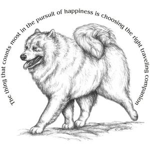 Samoyed clipart #4, Download drawings