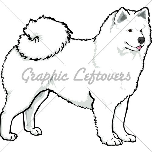 Samoyed clipart #1, Download drawings