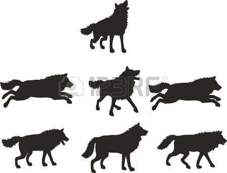 Samoyed clipart #5, Download drawings