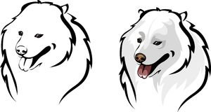 Samoyed clipart #20, Download drawings