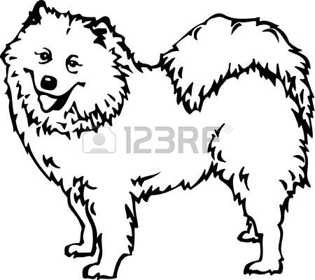 Samoyed clipart #15, Download drawings