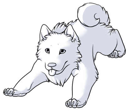 Samoyed coloring #9, Download drawings