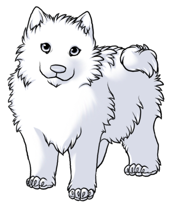 Samoyed coloring #3, Download drawings