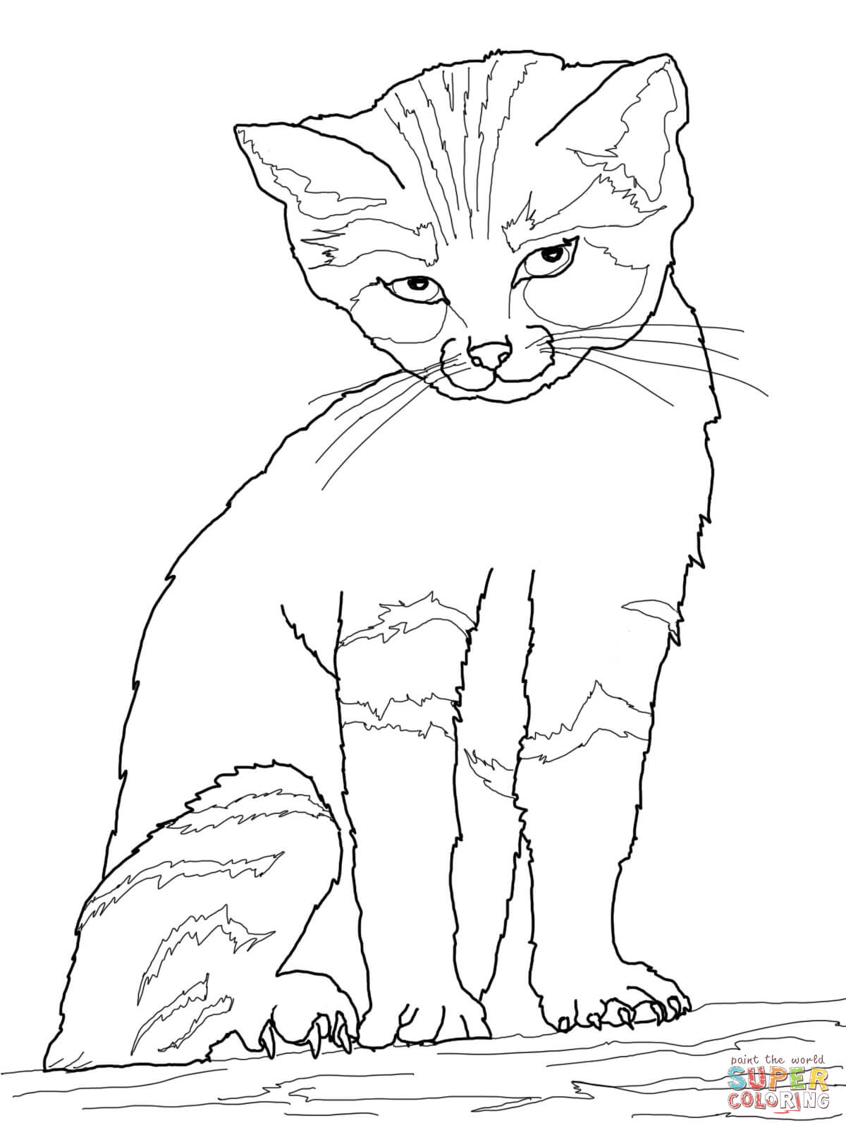 Sand Cat clipart #11, Download drawings