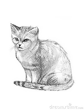 Sand Cat clipart #1, Download drawings
