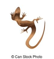 Sand Lizard clipart #9, Download drawings