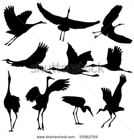 Sandhill Crane clipart #6, Download drawings