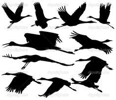 Sandhill Crane clipart #7, Download drawings