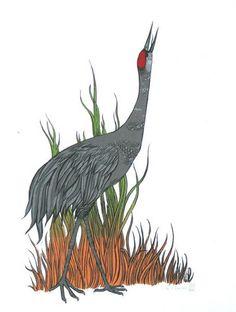 Sandhill Crane clipart #19, Download drawings