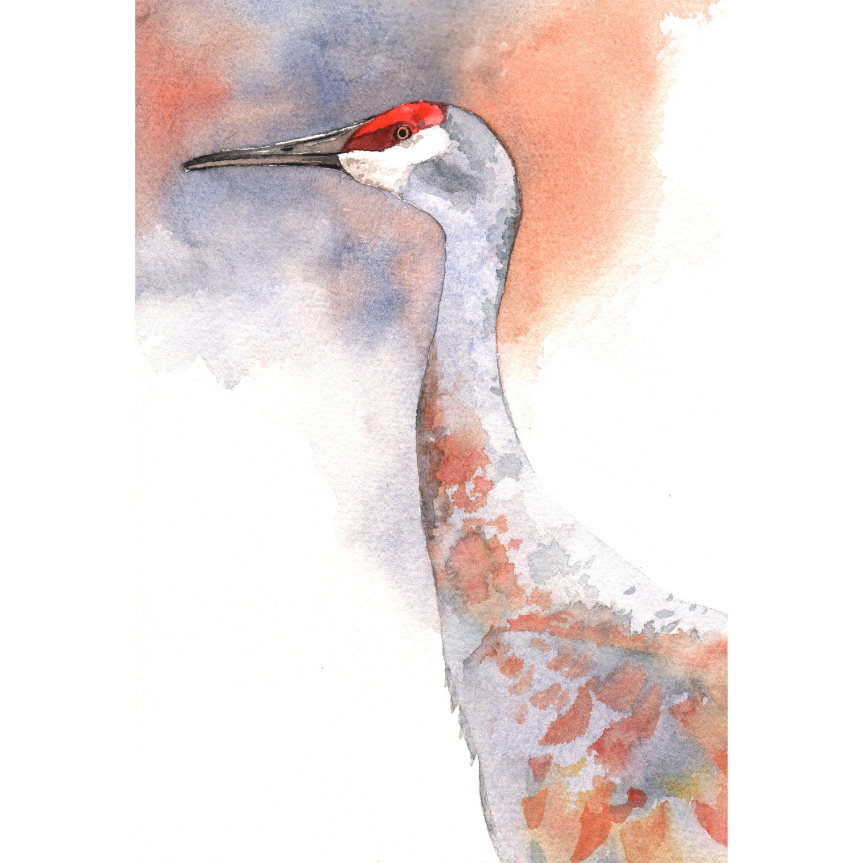 Sandhill Crane svg #3, Download drawings