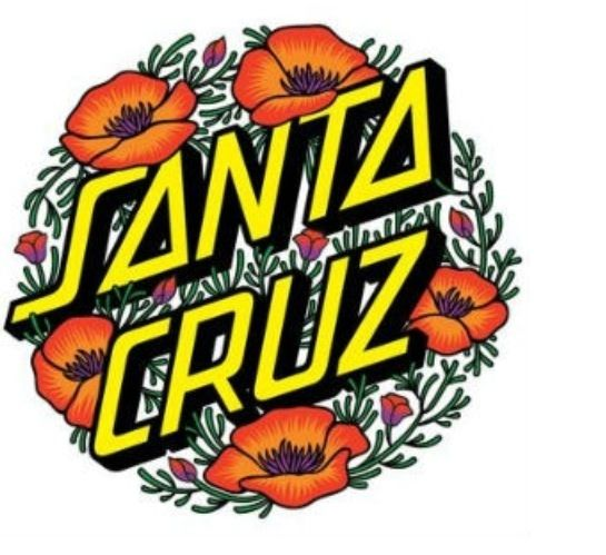 Download Santa Cruz clipart for free - Designlooter 2019