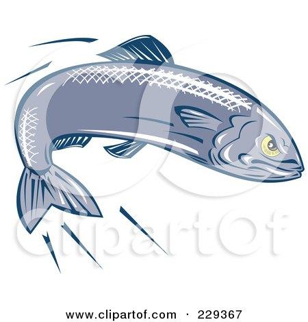 Sardine clipart #17, Download drawings