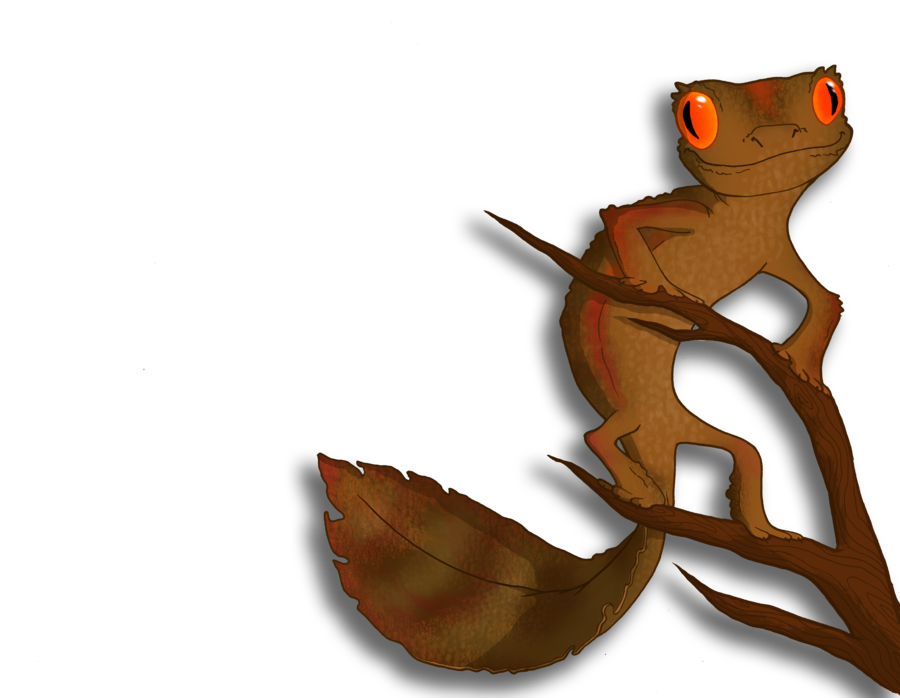 Satanic Leaf-tailed Gecko clipart #12, Download drawings