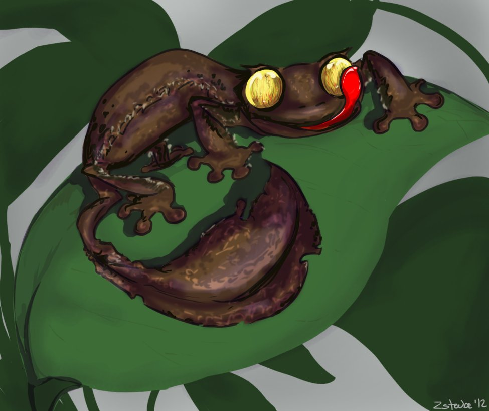 Satanic Leaf-tailed Gecko clipart #1, Download drawings