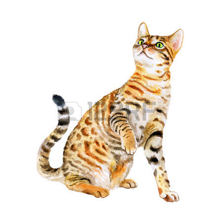 Serval clipart #3, Download drawings