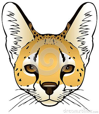Savannah Cat clipart #2, Download drawings