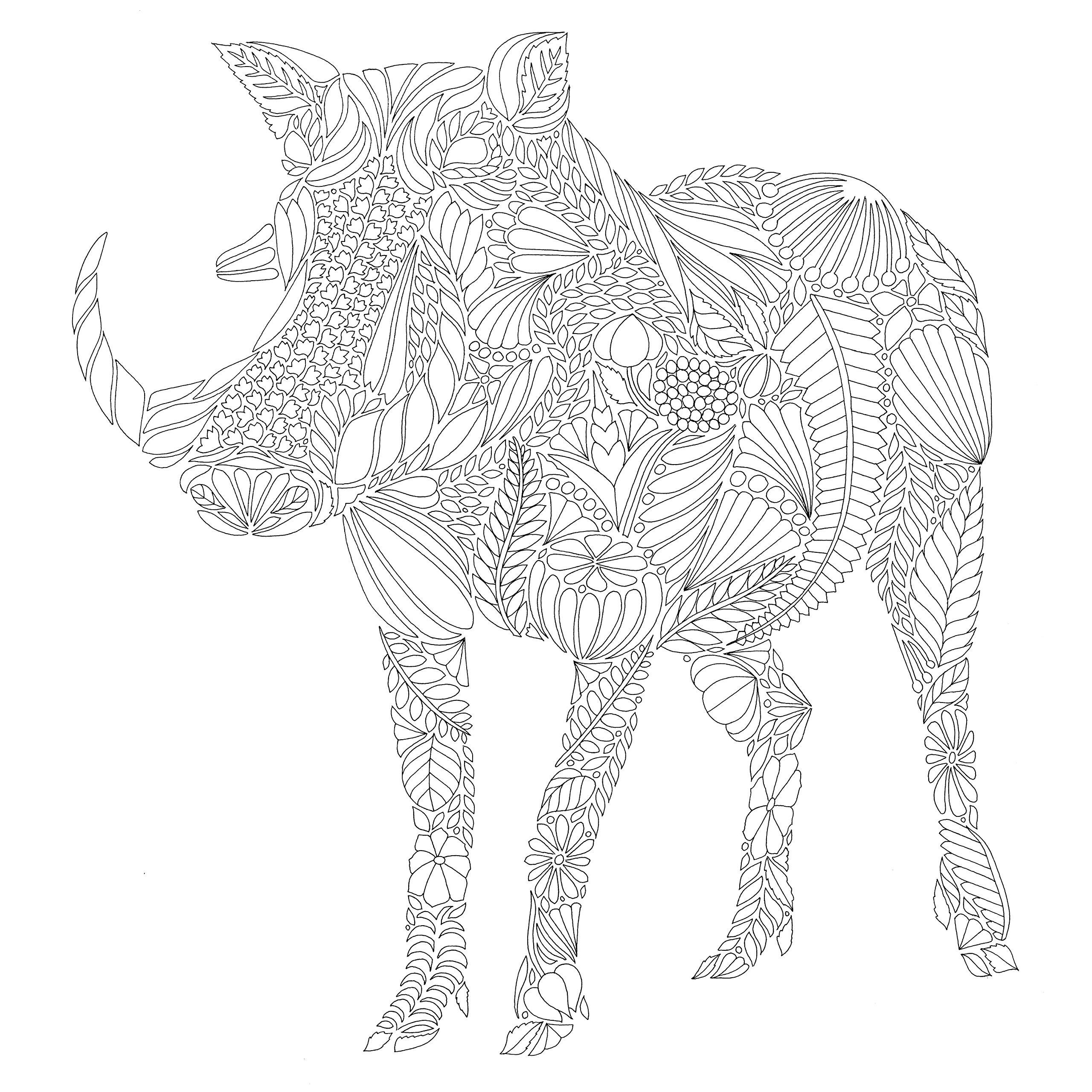 Savannah coloring #10, Download drawings