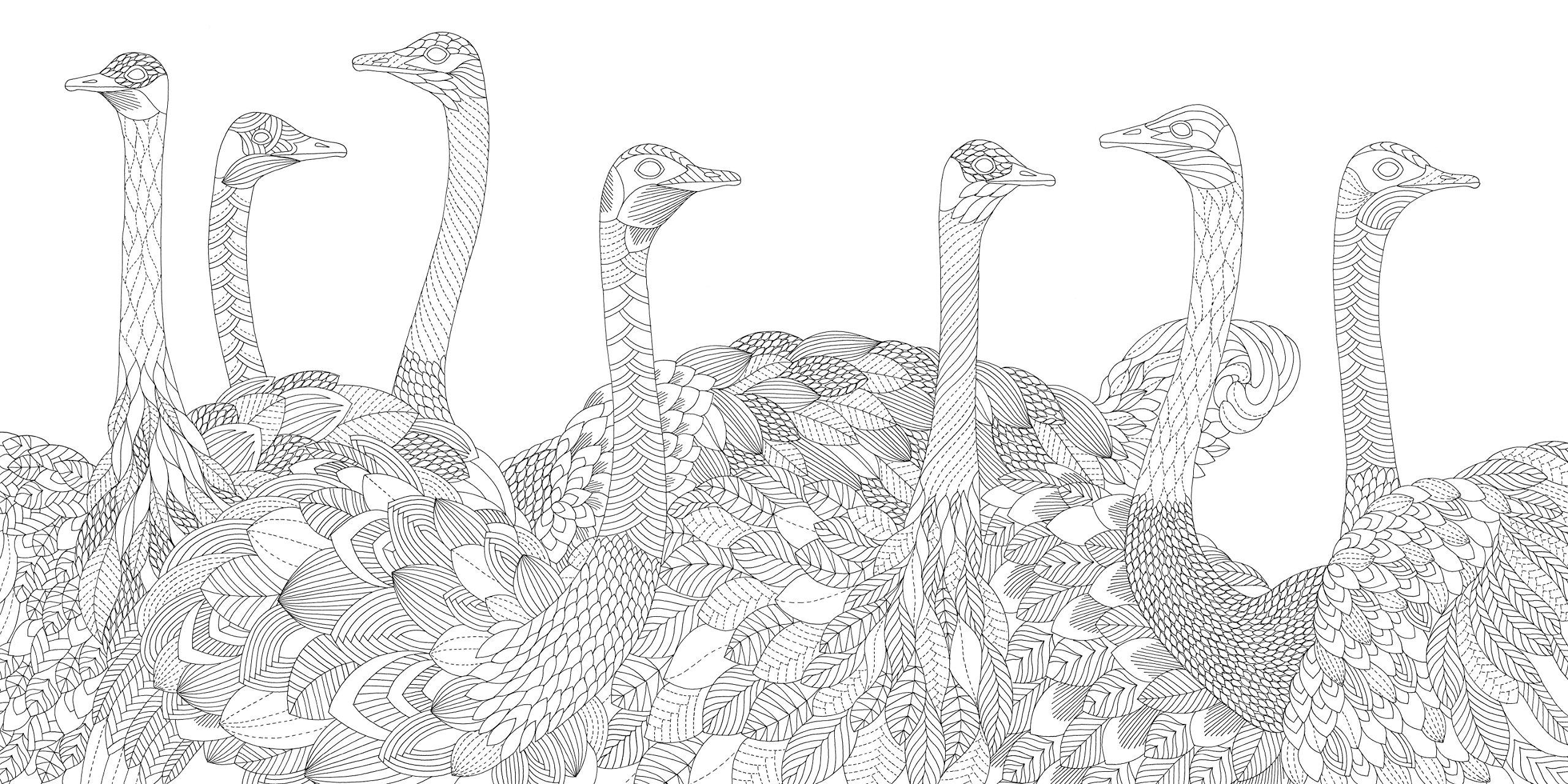 Savannah coloring #5, Download drawings