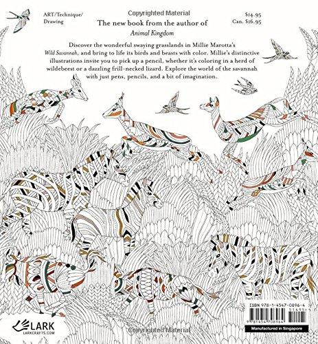 Savannah coloring #18, Download drawings