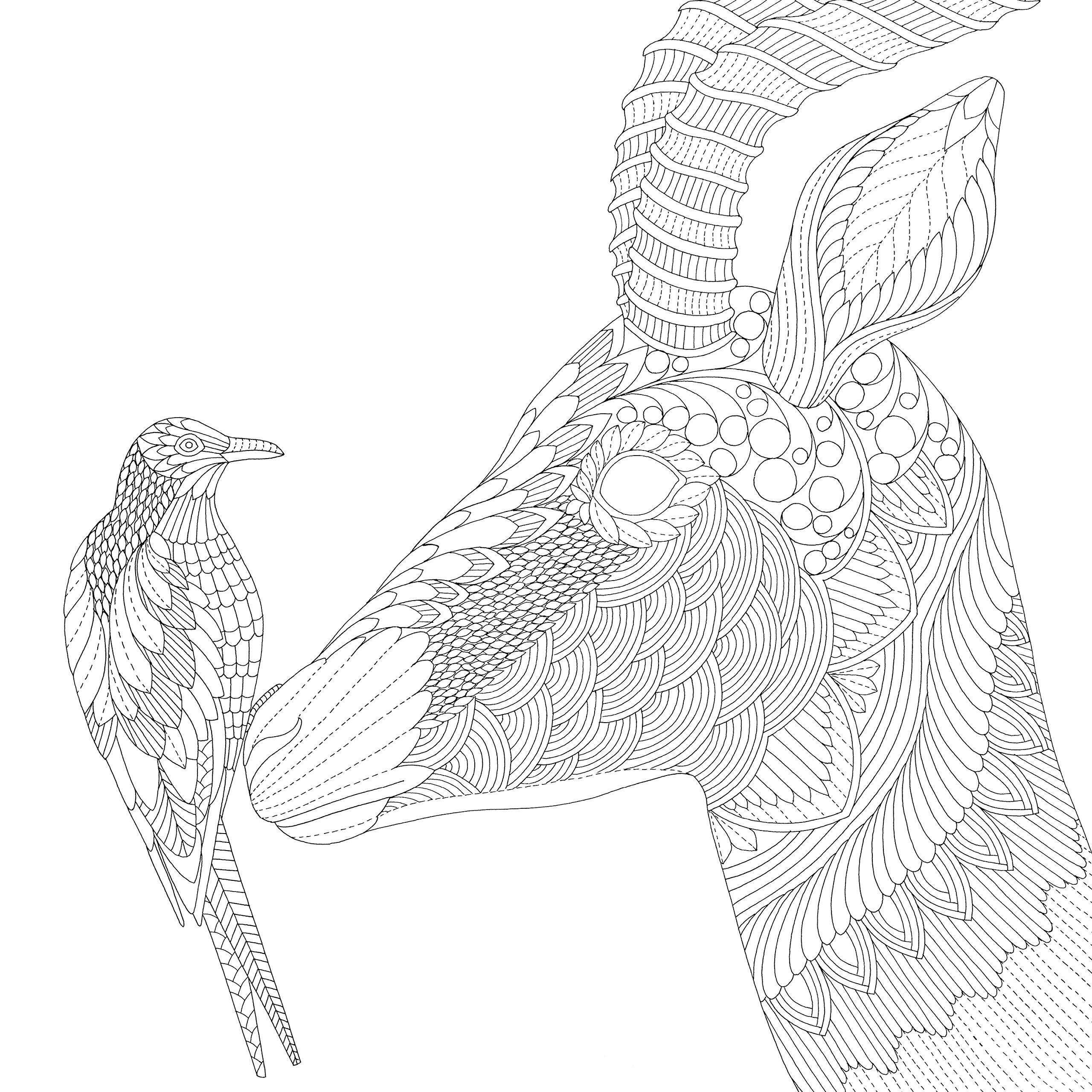Savannah coloring #8, Download drawings