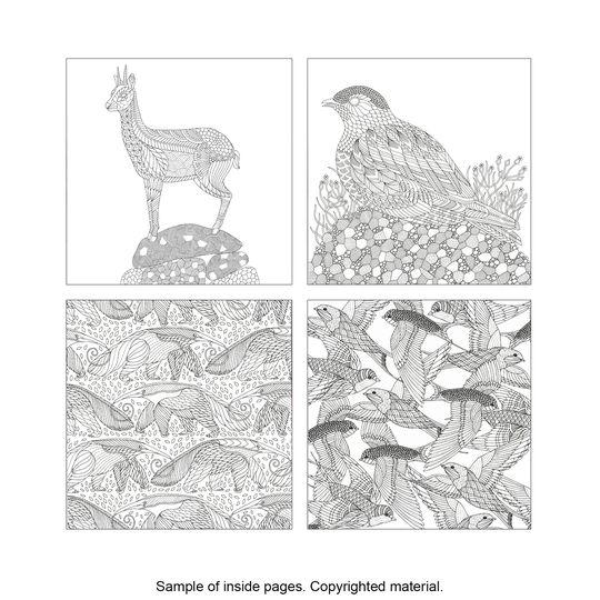 Savannah coloring #3, Download drawings